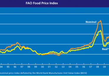 Preţurile mondiale la alimente au rămas stabile în luna decembrie