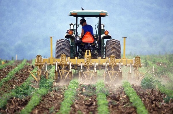 Situaţia la zi a plăţii subvenţiilor pentru fermieri