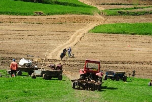 O bancă din România a dublat volumul finanţărilor pentru agricultură