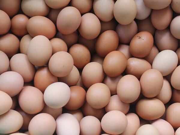 Ouă contaminate cu Fipronil au ajuns în consum!