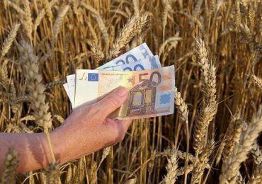 Încep plăţile pentru sprijinul cuplat în sectorul vegetal