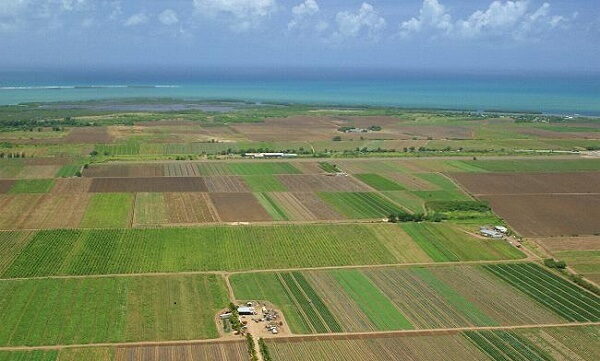Scoaterea din circuitul agricol a terenurilor pe care există construcţii ar putea fi prelungită la cinci ani