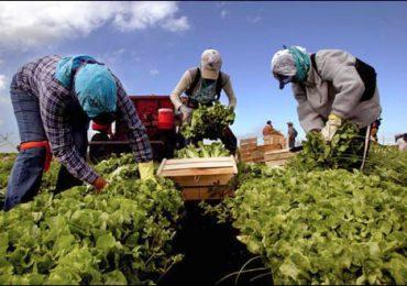 Zilierii vor putea fi folosiţi doar în agricultură