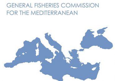Reuniune tehnică a Comisiei Generale pentru Pescuit în Marea Mediterană