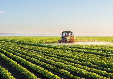 """""""Agricultura este primul domeniu cu potenţial de creştere în acest an"""""""