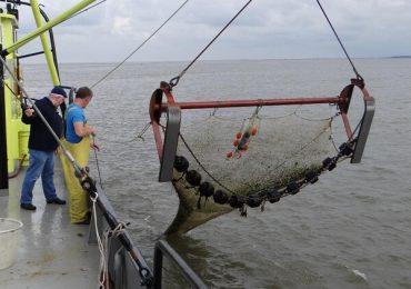 Oportunităţi de finanţare pentru pescuit şi acvacultură