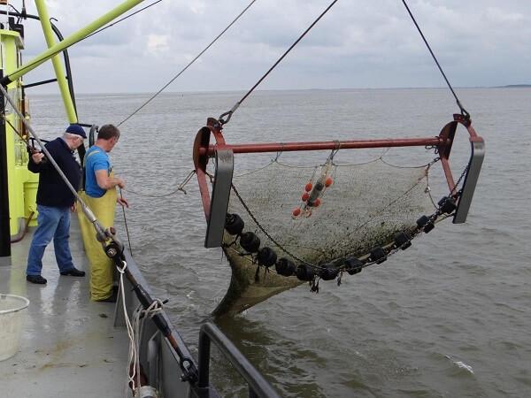 Acord provizoriu cu Parlamentul European în domeniul pescuitului