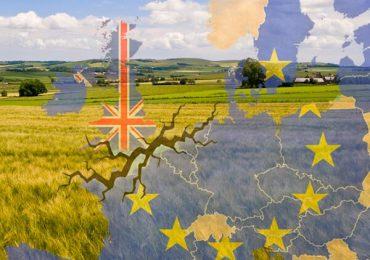 Avertisment cu privire la efectele produse de Brexit