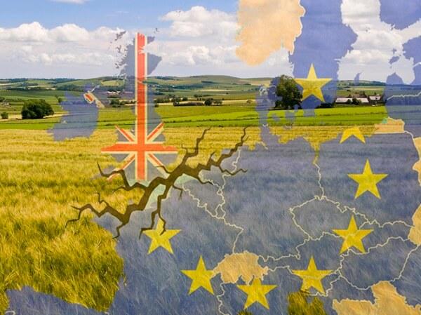 Liderii Uniunii Europene acceptă amânarea Brexit până la data de 31 octombrie