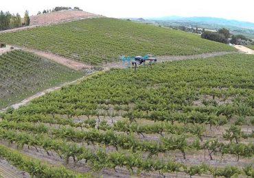 Dronele, o soluţie şi pentru agricultură