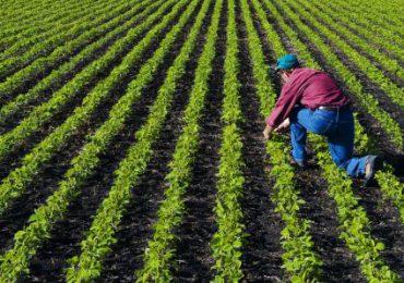 Sprijinul cuplat, mai aproape de fermieri