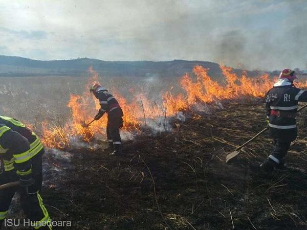 Hunedoara: 170 de hectare de teren afectate de incendiile de vegetaţie uscată. Subvenţii suspendate de APIA?