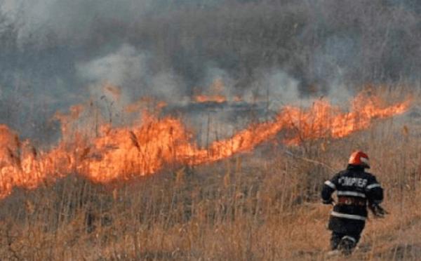 Pompierii au transmis peste 300 de notificări către APIA în cazul incendiilor de vegetaţie uscată
