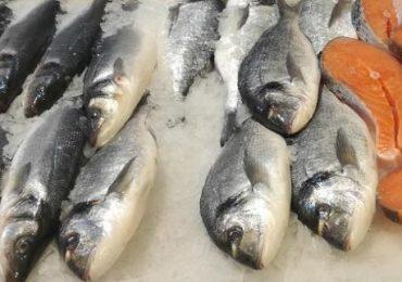 Acţiuni de control ale Agenţiei Naţionale pentru Pescuit şi Acvacultură