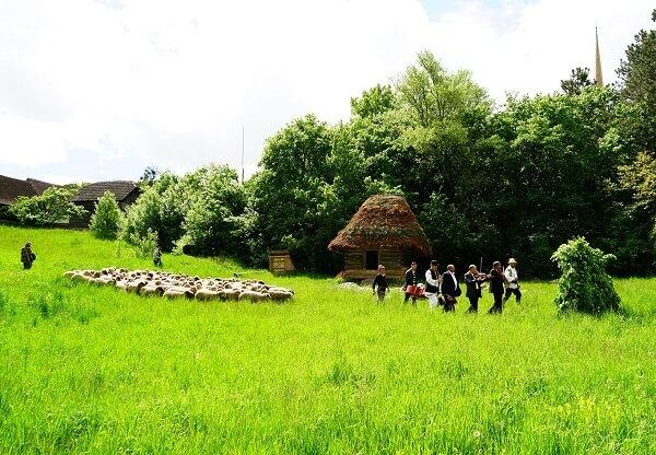 """""""Împreunişul - Măsurişul oilor în Transilvania tradiţională"""", eveniment organizat sâmbătă în Parcul Etnografic din Cluj-Napoca"""