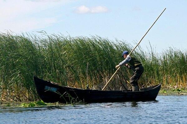 Regulamentul de pescuit comercial în Delta Dunării
