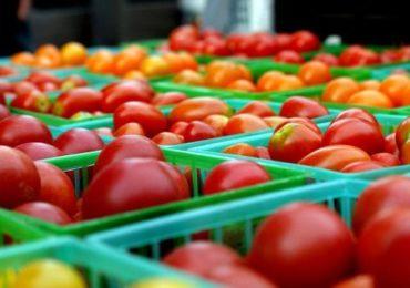 Tomatele româneşti, prezente în pieţele agroalimentare din toată ţara