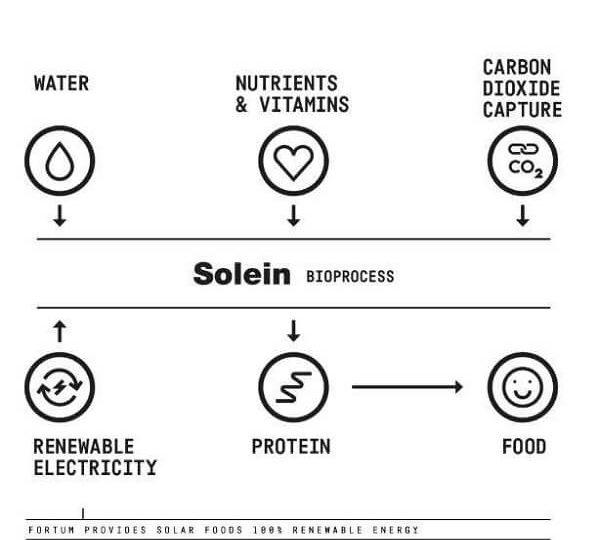 Pudră proteică realizată din... CO2
