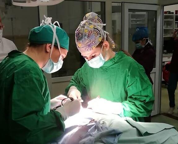 Acţiune caritabilă a studenţilor de la medicină veterinară