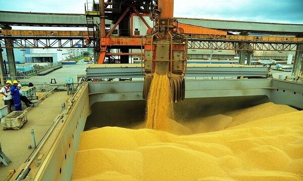 China opreşte achiziţiile de produse agricole americane pe fondul intensificării războiului comercial