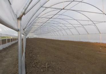 MADR se apără în scandalul solariilor dezinfectate cu formol