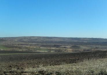 Propunere venită din parlament: Subvenţie diferenţiată la hectar în funcţie de calitatea solului?