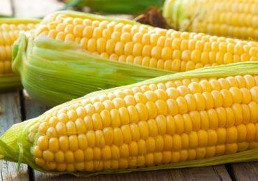 MADR acordă autorizaţii temporare pentru utilizarea de substanţe active la tratarea anumitor seminţe