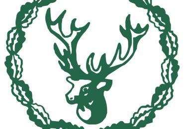 Silvicultorii solicită convocarea CSAT pentru analizarea problemelor pe care le au privind paza pădurilor