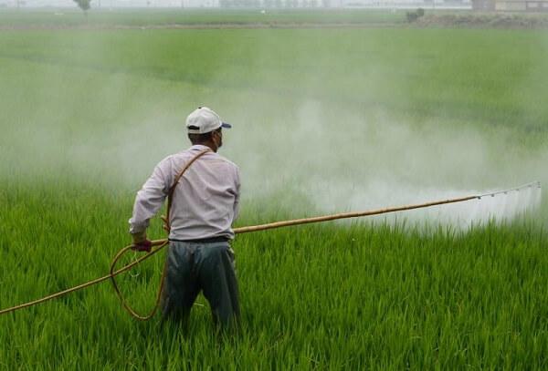 Thailanda va interzice glifosatul şi alte două pesticide