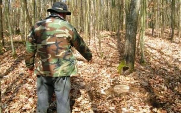 Personalul silvic va fi dotat cu armament de serviciu