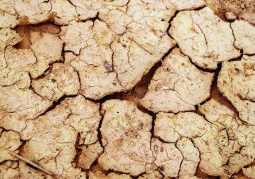 Insecuritate alimentară din cauza unei secete severe