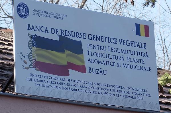 MADR, precizări cu privire la schimbarea conducerii Băncii de Resurse Genetice Vegetale Buzău