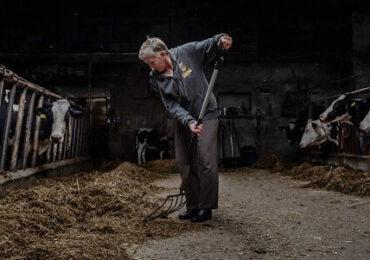 New York Times: Subvenţiile agricole sunt un obstacol pentru obiectivele UE împotriva schimbărilor climatice