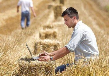 Fermierii au depus 70.960 de cereri unice de plată