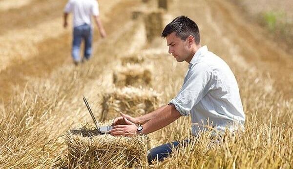 Câţi fermieri au fost autorizaţi la plată de APIA