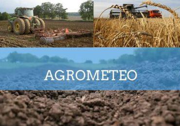 AGROMETEO | Lucrările caracteristice campaniei de vară se vor desfăşura în condiţii bune în perioada 22-28 iulie