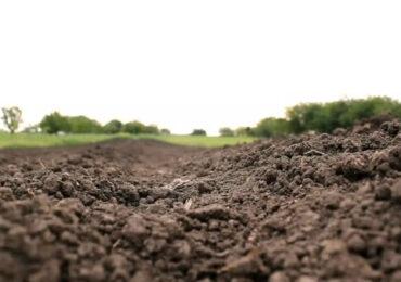 AGROMETEO - 18-24 martie | Aprovizionarea cu apă a solului agricol va fi în limite satisfăcătoare până la optime în majoritatea regiunilor