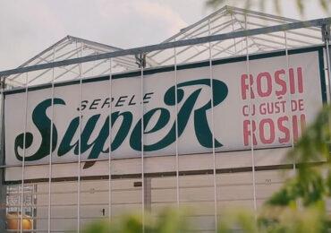 PRODUS ÎN ROMÂNIA | Serele SupeR, o afacere de succes cu roşii cherry