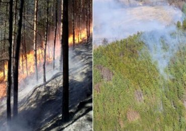 Incendiu provocat de igienizarea miriştilor