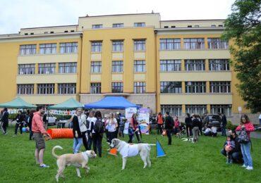 """""""Ziua interacţiunii om-animal"""", ediţia a 20-a, organizată de USAMV Cluj-Napoca în mediul virtual"""