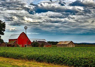 De la fermă la consumator. Strategii privind agricultura adoptate la nivel european