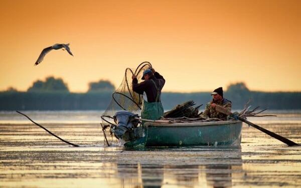 Permisele din 2019 pentru pescuit comercial în Delta Dunării, valabile până în luna iulie
